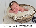 newborn baby girl sleeping in... | Shutterstock . vector #737208397