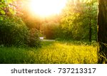 a landscape with greenery and... | Shutterstock . vector #737213317
