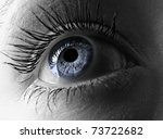 blue eye extreme close up. | Shutterstock . vector #73722682