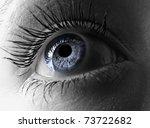 Blue Eye Extreme Close Up.