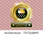 golden badge with rain icon... | Shutterstock .eps vector #737226895