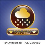 gold badge with rain icon and... | Shutterstock .eps vector #737230489