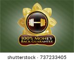 gold badge or emblem with... | Shutterstock .eps vector #737233405