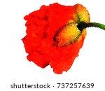 beautiful watercolor painting...   Shutterstock . vector #737257639