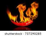 chili pepper isolated on black... | Shutterstock . vector #737290285