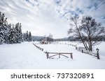 Winter Landscape View With Pin...