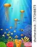 jellyfish swim in the... | Shutterstock .eps vector #737348875
