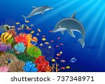 dolphin cartoon with underwater ... | Shutterstock .eps vector #737348971
