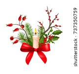 vector christmas decorations.... | Shutterstock .eps vector #737350759