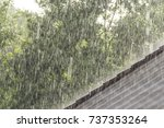Downpour scenery with roof and...
