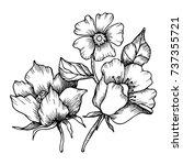 vector abstract  flowers. black ... | Shutterstock .eps vector #737355721