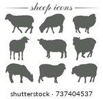 animal husbandry. breeding of... | Shutterstock .eps vector #737404537