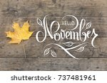 autumn yellow maple leave on... | Shutterstock . vector #737481961