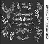winter natural sketch template... | Shutterstock .eps vector #737489605
