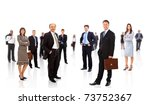 young attractive business... | Shutterstock . vector #73752367