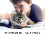 Stock photo  cute cheerful little boy and cat in a bright room 737539591