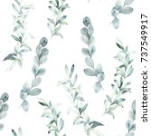 watercolor seamless pattern... | Shutterstock . vector #737549917