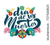 day of the dead lettering... | Shutterstock .eps vector #737560825