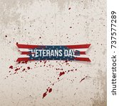 veterans day american greeting... | Shutterstock .eps vector #737577289