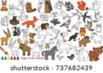 wild animal set to be colored ... | Shutterstock .eps vector #737682439