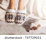 female legs in slippers against ... | Shutterstock . vector #737729011