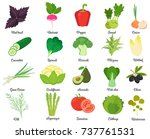 set of tasty vegetables | Shutterstock .eps vector #737761531