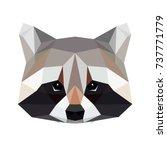 vector polygonal raccoon... | Shutterstock .eps vector #737771779