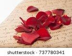 petals of rose | Shutterstock . vector #737780341