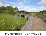 Wakodahatchee Wetlands In...