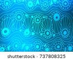 light blue vector natural... | Shutterstock .eps vector #737808325