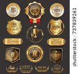 retro vintage golden badges... | Shutterstock .eps vector #737839261