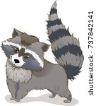 a raccoon with a raised tail | Shutterstock .eps vector #737842141