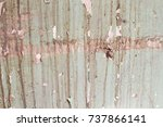 the wall of an old house with... | Shutterstock . vector #737866141