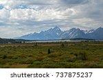 meadow in grand teton national...   Shutterstock . vector #737875237
