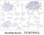 flowers  branches  leaves... | Shutterstock .eps vector #737875921