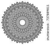 delicate snowflake. adult...   Shutterstock .eps vector #737889811
