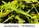 heap of ruccola leaves | Shutterstock . vector #737906521