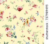 rose flower pattern with... | Shutterstock . vector #737989495