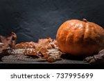 autumn background with pumpkin | Shutterstock . vector #737995699