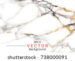 abstract white marble texture ... | Shutterstock .eps vector #738000091