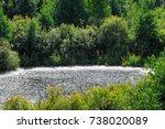 summer landscape. swamp  marsh  ... | Shutterstock . vector #738020089