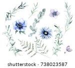 watercolor floral set. hand... | Shutterstock . vector #738023587