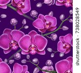 watercolor illustrations of... | Shutterstock . vector #738028549