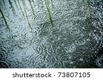 Rain Falls And Splashes On A...