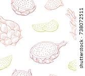 pitaya dragon fruit graphic... | Shutterstock .eps vector #738072511