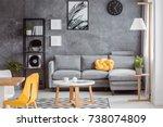modern scandinavian decor in... | Shutterstock . vector #738074809