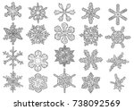 snowflakes illustration ... | Shutterstock .eps vector #738092569