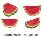 watermelon vector illustration | Shutterstock .eps vector #738131281