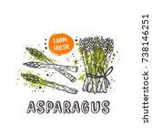 asparagus isolated set. hand... | Shutterstock .eps vector #738146251