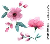 delicate pink flowers in the... | Shutterstock . vector #738188647